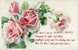 Albert Mines tourist postcard