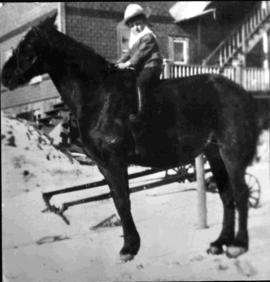 Child on the Family Horse