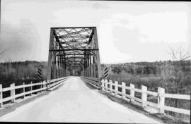 Nicol Bridge