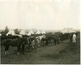 7th Hussars in military camp