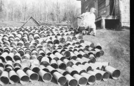 Sap buckets drying