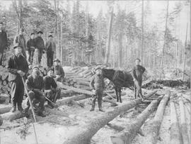 Hollis Cairns' Logging Camp