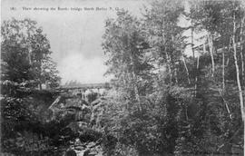 View showing the Rustic bridge, North Hatley, P.Q.