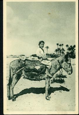 Young boy on donkey in Egypt